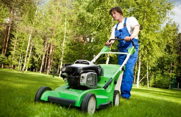 Find Your One Stop Shop for All Your Lawnmower Related Needs